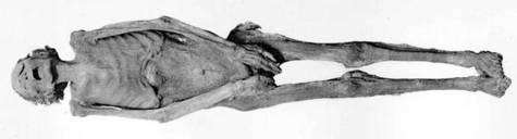 unknown mummy