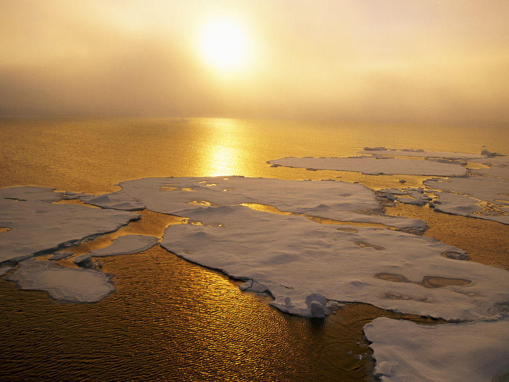 Sunlight over ice floes.